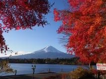 Fuji-Berg mit Rotahornblatt und Tourismus auf Boot im See Stockbilder