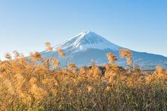 Fuji berg på Kawaguchiko sjön Arkivfoton