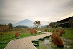 Fuji berg på Kawakuchigo sjön Arkivfoton