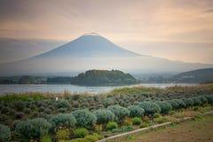 Fuji berg på Kawakuchigo sjön Arkivbilder