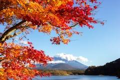 Fuji berghöstsäsong, Japan Arkivbild