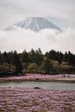 Fuji bergslut upp Fotografering för Bildbyråer