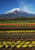 Fuji DG-24 van MT royalty-vrije stock afbeeldingen