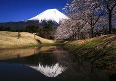 Fuji-DG 57 di Mt Fotografie Stock Libere da Diritti