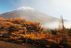 Fuji-DG 62 di Mt Immagini Stock