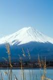 Fuji en el lago Kawaguchiko Foto de archivo libre de regalías