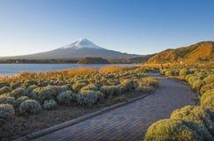 Fuji en Oishi-Park Royalty-vrije Stock Foto