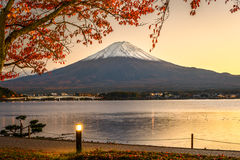 Fuji in Fall Royalty Free Stock Photos