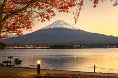 Fuji in Fall royalty free stock photos