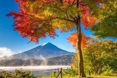 Fuji in Fall Stock Images