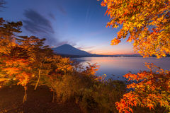 Fuji in Fall Royalty Free Stock Photography