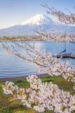 Fuji góra i Sakura drzewo z jachtu molem przy Kawaguchiko jeziorem Obraz Royalty Free