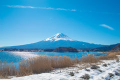 Fuji góra od Kawaguchiko jeziora Obrazy Stock