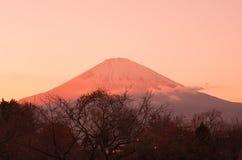 Fuji góra w wieczór czasie Obraz Royalty Free