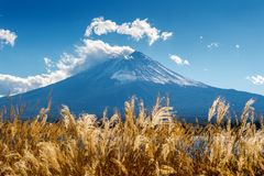 Fuji góry i kawaguchiko jezioro w jesieni, Japonia Zdjęcie Stock