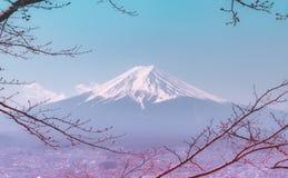Fuji im Winter gestaltet durch trockenen Fallbaum in der blauen Farbe lizenzfreie stockfotos