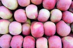 Fuji jabłka zdjęcie stock