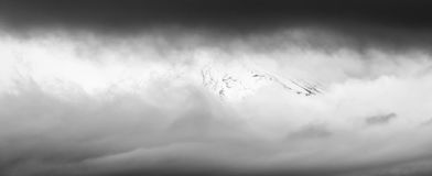 Fuji mountain black and white background Stock Photography