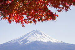 Fuji mountain Stock Images
