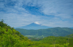 Fuji. Mountain Fuji in Japan and front tree Stock Image