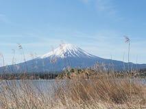 Fuji Mountain Royalty Free Stock Photo