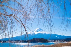Fuji mountain from Kawaguchiko lake Royalty Free Stock Images