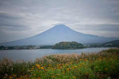 Fuji mountain at Kawakuchigo lake Stock Image