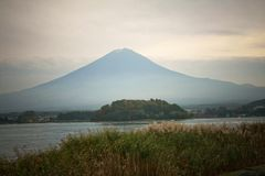 Fuji mountain at Kawakuchigo lake Stock Photography