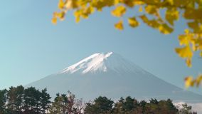Fuji mountain peak with partial autumn leaves in frame plus gentle zoom out. Can be sped up for more drama.