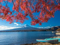 Fuji mountain with red maple leaf and tourism on boat in the lake. Fuji mountain with red maple leaf and the fishermen are fishing on the boat with many tourism Stock Photo