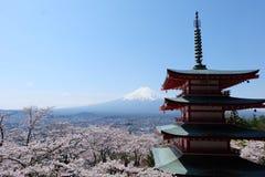 Fuji mountain and Sakura bloomimg at the entrace of Chureito Pagoda, Japan Royalty Free Stock Image