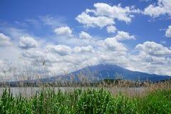 Fuji Mountain at lake Kawaguchi, Japan royalty free stock photos