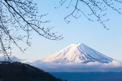 Fuji mountain Royalty Free Stock Photography