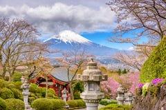 Fuji Mountain in Spring royalty free stock photos