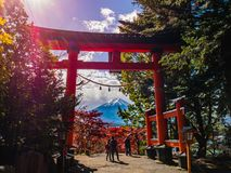 Fuji mountain view from Chureito Pagoda royalty free stock images