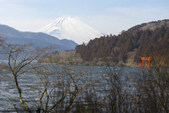 Fuji mountain in winter Stock Image