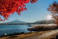 Fuji mt Fotografia de Stock Royalty Free