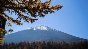 Fuji mt Fotografie Stock Libere da Diritti