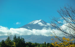 fuji mt Obraz Royalty Free