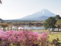Fuji mt Fotografia de Stock