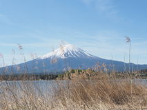 Fuji mt Foto de archivo libre de regalías
