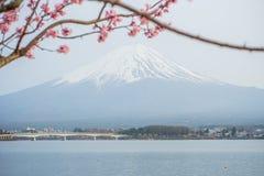 Fuji mt Fotos de archivo libres de regalías
