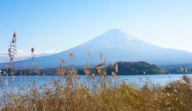 Fuji mt Immagine Stock