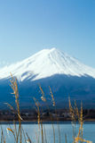 Fuji no lago Kawaguchiko foto de stock royalty free