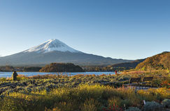 Fuji and Oishi Park. One of the most famous location for Fuji sightseeing on the mountain in Lake Kawaguchiko, Yamanashi, Japan called Oishi Park Stock Photo