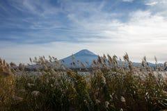 Fuji-San Imágenes de archivo libres de regalías