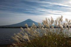Fuji-San Fotografía de archivo libre de regalías