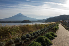 Fuji-San Stockbild