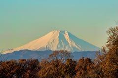 Fuji-San Imagem de Stock Royalty Free