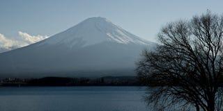 Fuji san #8. Mt. Fuji from Lake Kawaguchi Royalty Free Stock Photography